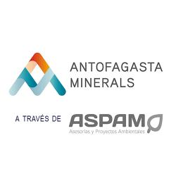 14_Antofagasta-Minerals_500
